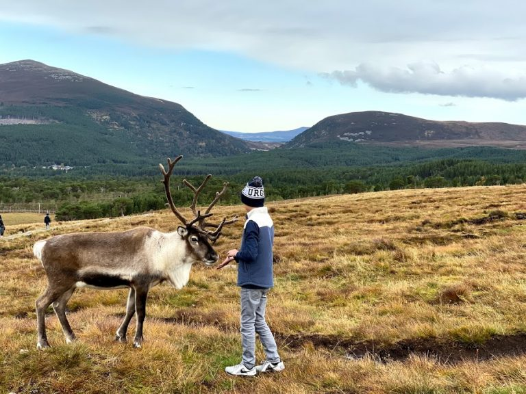 Boy with Reindeer
