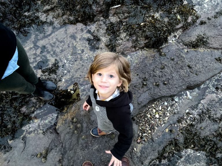 Toddler boy looking up from rocky Scotland beach