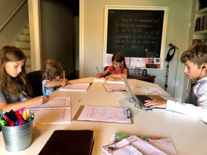Homeschooling ~ Our 'Why'