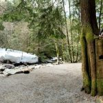 Pacific Northwest Family Vacation