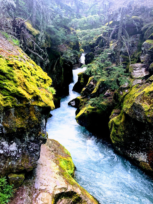 Waterfall Glacier National Park
